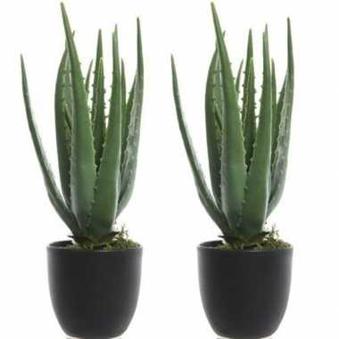 Hobby x groene aloe vera kunstplanten zwarte pot