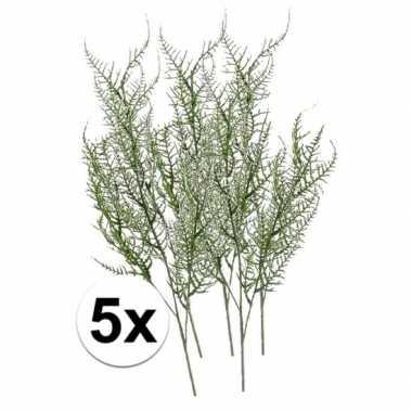 Hobby x groene asparagus kunstbloemen tak groen
