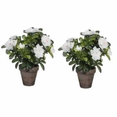 Hobby x groene azalea kunstplant witte bloemen pot stan grey