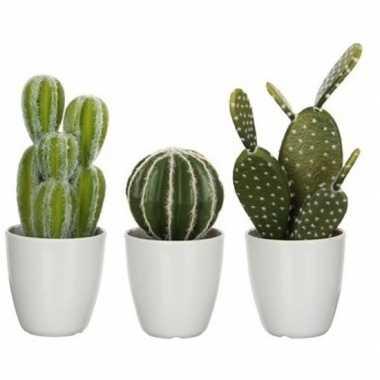 Hobby x groene cactussen kunstplanten witte pot