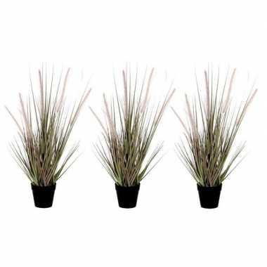 Hobby x groene dogtail siergras kunstplant zwarte pot 10160566
