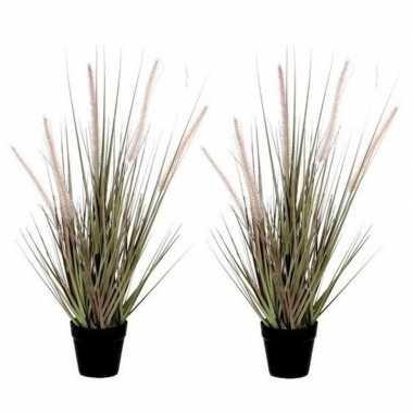 Hobby x groene dogtail/siergras kunstplant zwarte pot