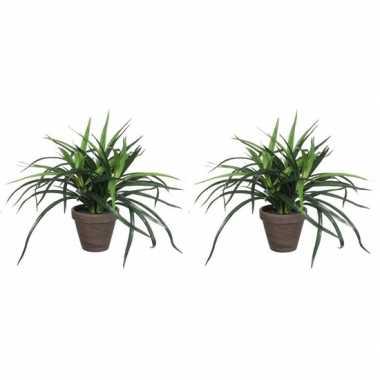 Hobby x groene dracaena kunstplanten bruine pot