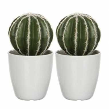 Hobby x groene echinocactus/bolcactussen kunstplanten