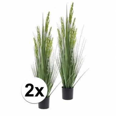 Hobby x groene grain grass grasplant kunstplant pot