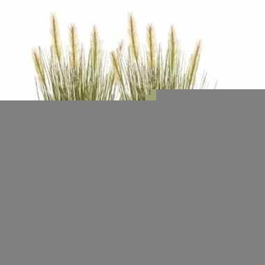 Hobby x groene grasplant kunstplanten pot
