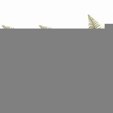 Hobby x groene ledervaren varen bruin kunsttakken kunstplanten cm 10139601