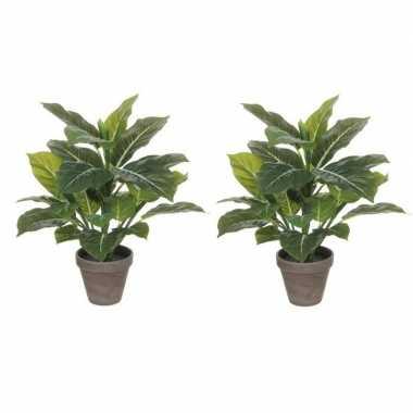 Hobby x groene philodendron kunstplanten grijze pot
