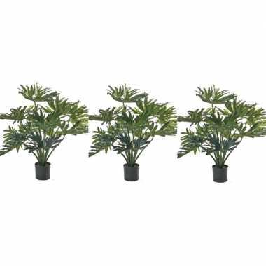 Hobby x groene philondendron kunstplanten binnen