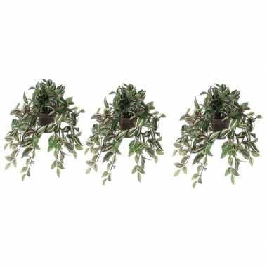 Hobby x groene tradescantia/vaderplant kunstplant hangende pot