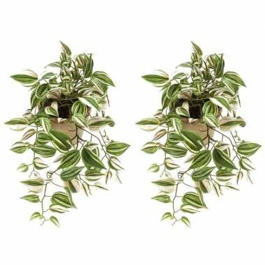 Hobby x groene tradescantia/vaderplant kunstplanten