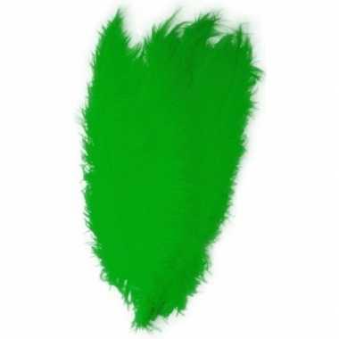 Hobby x grote decoratie veren/struisvogelveren groen