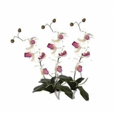 Hobby x kunstbloemen orchidee takken wit roze