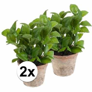 Hobby x kunstplant basilicum kruiden groen terracotta pot
