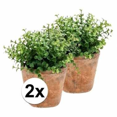 Hobby x kunstplant eucalyptus groen oude terracotta pot