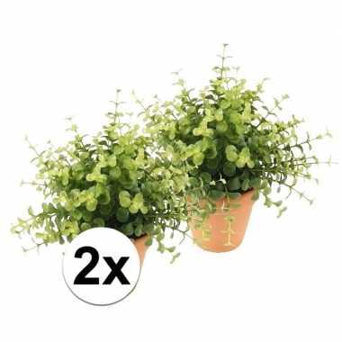 Hobby x kunstplant eucalyptus groen terracotta pot