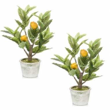 Hobby x kunstplant groene citroenboom betonlook pot