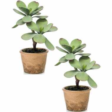 Hobby x kunstplant groene kalanchoe vetplant bruine pot