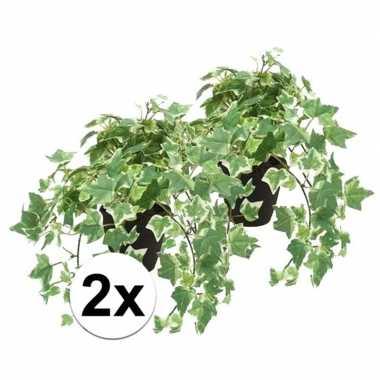 Hobby x kunstplant klimop groen/wit zwarte pot