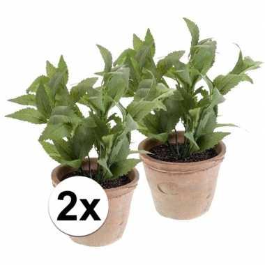 Hobby x kunstplant munt kruiden groen oude terracotta pot