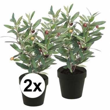 Hobby x kunstplant olijfboompje groen zwarte pot