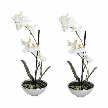 Hobby x kunstplant witte orchidee/phalaenopsis pot