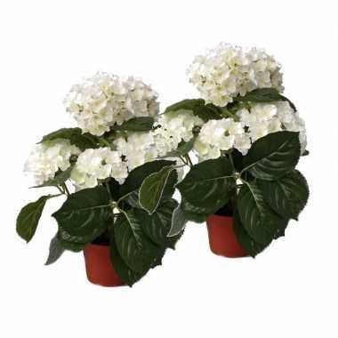 Hobby x kunstplanten hortensia wit