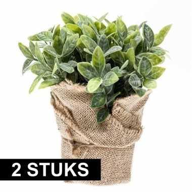 Hobby x kunstplanten munt kruiden groen jute pot