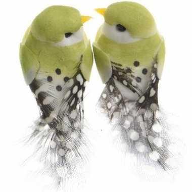 Hobby x lichtgroene vogels decoraties draad