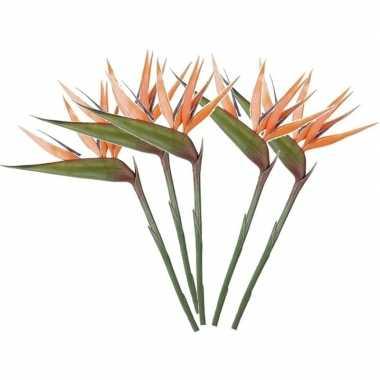 Hobby x oranje strelitzia/paradijsvogelbloem kunstbloemen