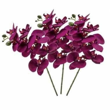 Hobby x violet paars phaleanopsis/vlinderorchidee kunstbloemen