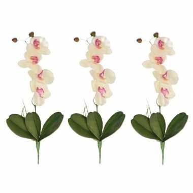 Hobby x wit/roze orchidee/phalaenopsis kunstplanten binnen