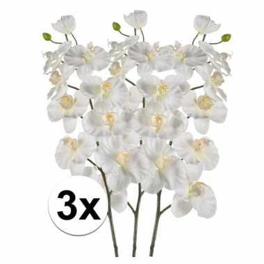 Hobby x witte orchidee kunstbloemen tak