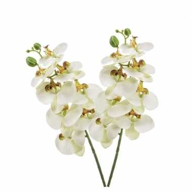 Hobby x witte phaleanopsis/vlinderorchidee kunstbloemen