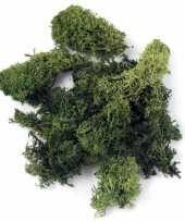 Hobby decoratie mos donkergroen gram 10122524