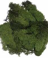 Hobby decoratie mos donkergroen gram 10129499