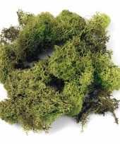 Hobby decoratie mos lichtgroen gram 10122523