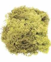 Hobby decoratie mos lichtgroen gram 10129497