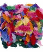 Hobby decoratie veren gekleurd gram