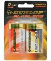 Hobby dunlop alkaline batterijen lr d stuks