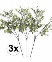 Hobby grijs groene eucalyptus kunstplant tak