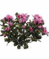 Hobby kunst azaleaplant roze