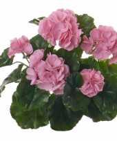 Hobby kunst franse geranium roze