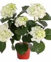 Hobby kunst hortensia plant wit groen