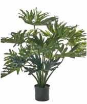 Hobby kunst philo selloum plant