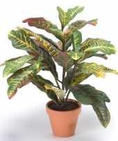 Hobby kunstplant croton groen bordeaux pot 10109125