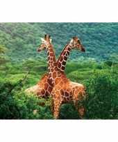 Hobby placemat giraffe d