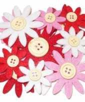 Hobby vilt rood wit roze vilten bloemen knoop c