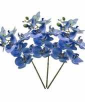 Hobby x blauwe phaleanopsis vlinderorchidee kunstbloemen 10139509