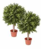 Hobby x buxus bol kunstplanten stam pot